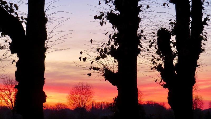 Sunset-2-John-Raggers