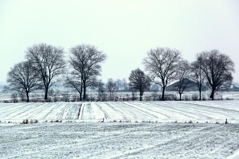winter20193
