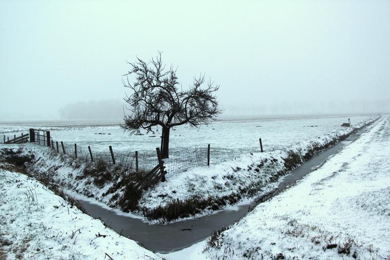 winter20195