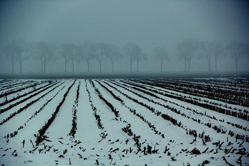 winter20196