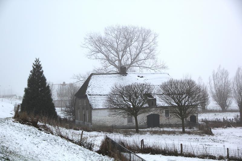 winter20198